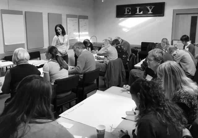 Development phase stakeholder consultation, Ely Museum